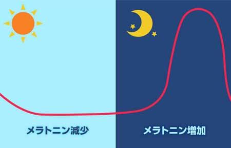質の良い睡眠を確保するためにはメラトニンの働きがカギ