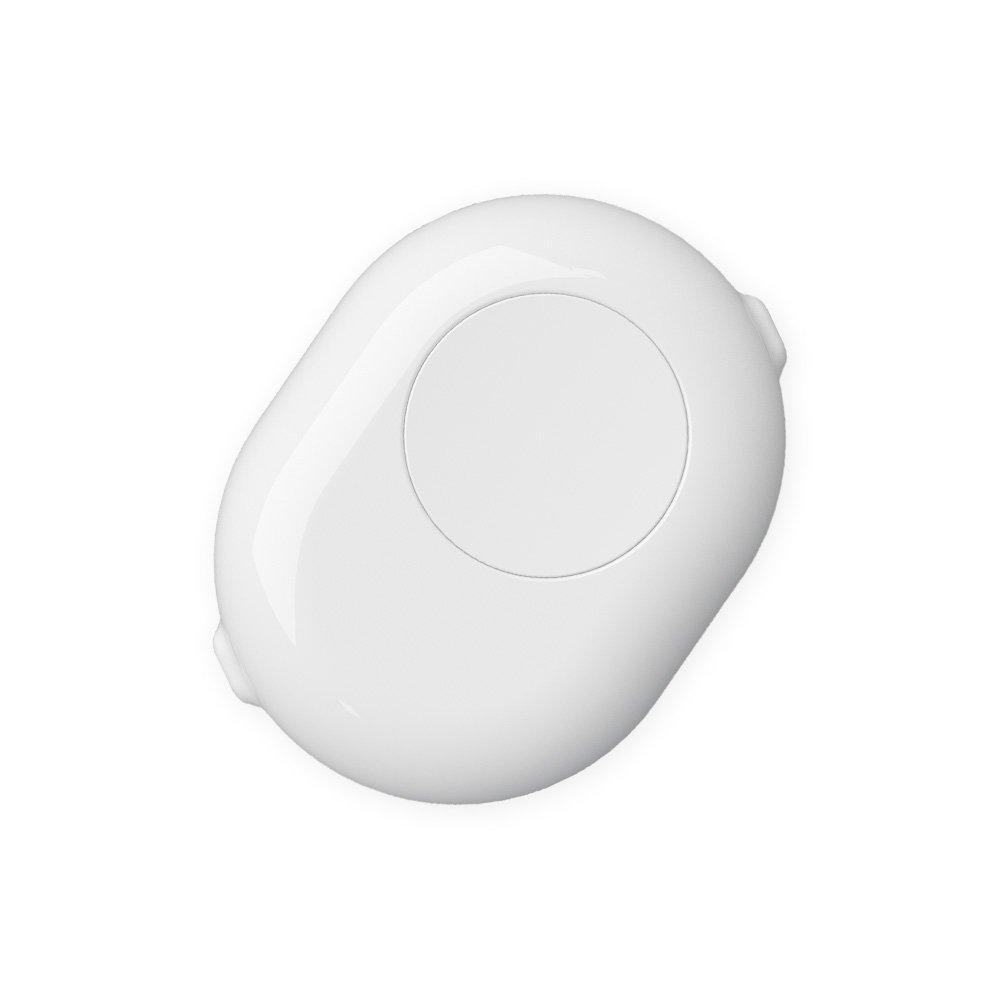 shelly button