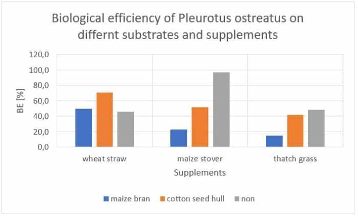 Figure 2: Influence of different substrates and supplements on the biological efficiency of P. ostreatus