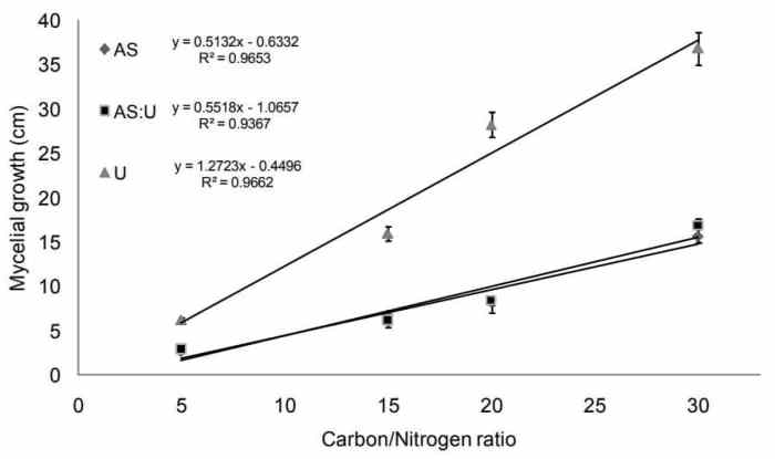 Figure 7: Correlation between the average C:N ration of different substrates and MRR of Agaricus blazei (AS: ammonium sulfate, U: urea, AS:U 1:1)