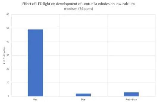 Effect of LED light on development of Lentunila edodes on low-calcium medium