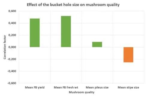 Effect of the bucket hole size on mushroom quality of Pleurotus florida