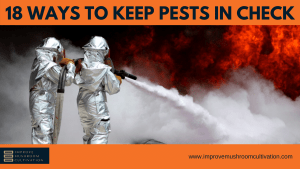18 Ways to keep pests in check