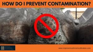 How Do I Prevent Contamination?