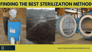 How your sterilization method will impact your mushroom yield