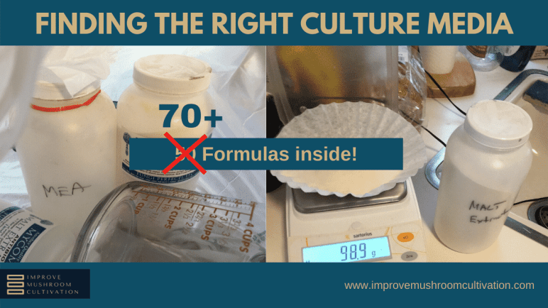 Substrate - Finding the right culture media