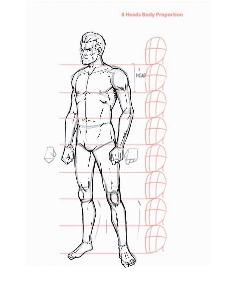hight resolution of step 7 drawing the body