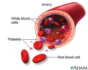 Low-Platelets-Count-1