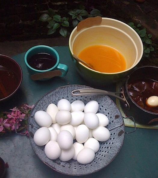 ambatalia eggs ready to dye 2