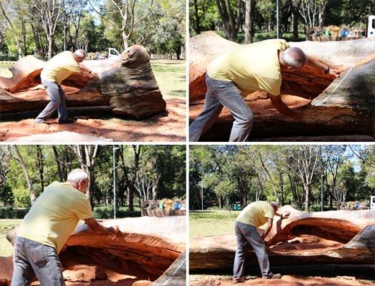 Hugo Franca makes furniture from fallen trees