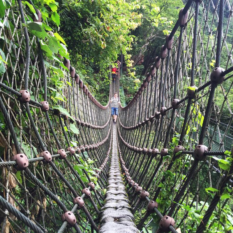►花蓮–小錐麓步道繩索吊橋 • 感受走鋼索般的刺激感