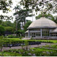 TAIPEI|Botanical Gardens:An Oasis In The City