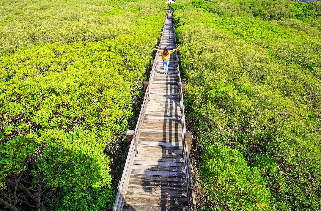 2021過年旅遊景點推薦,春節旅遊新竹走春景點