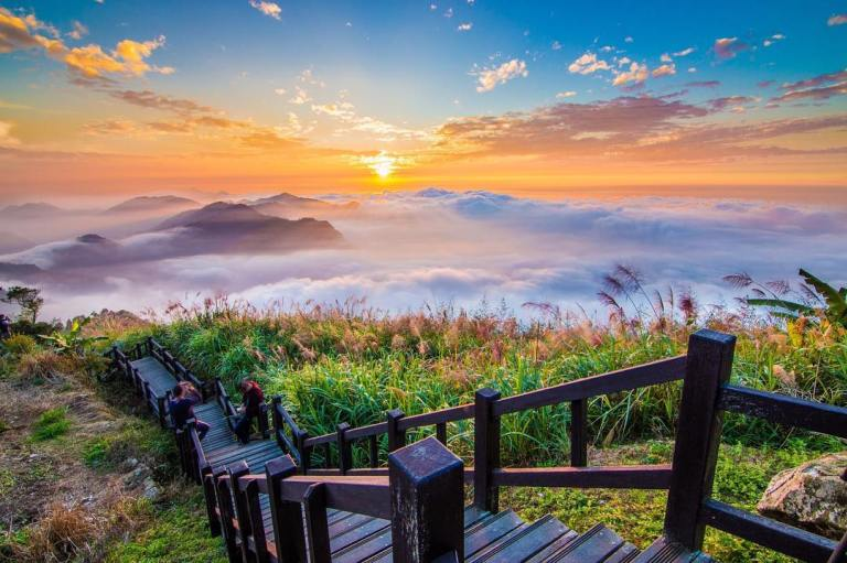 2021阿里山櫻花季 阿里山櫻花 嘉義景點 嘉義阿里山 阿里山賞櫻 阿里山景點 隙頂二延平步道