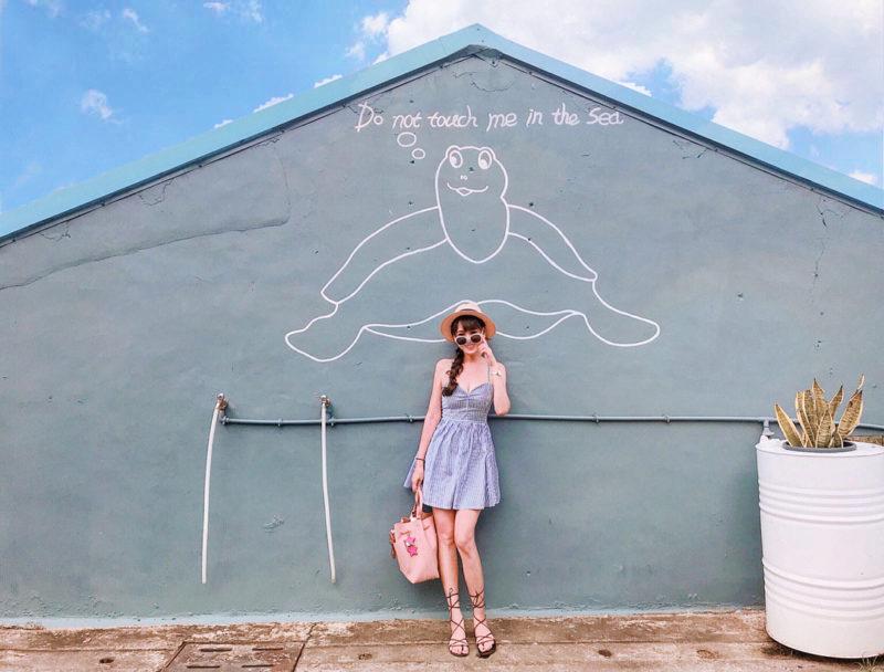 小琉球景點 小琉球海龜牆