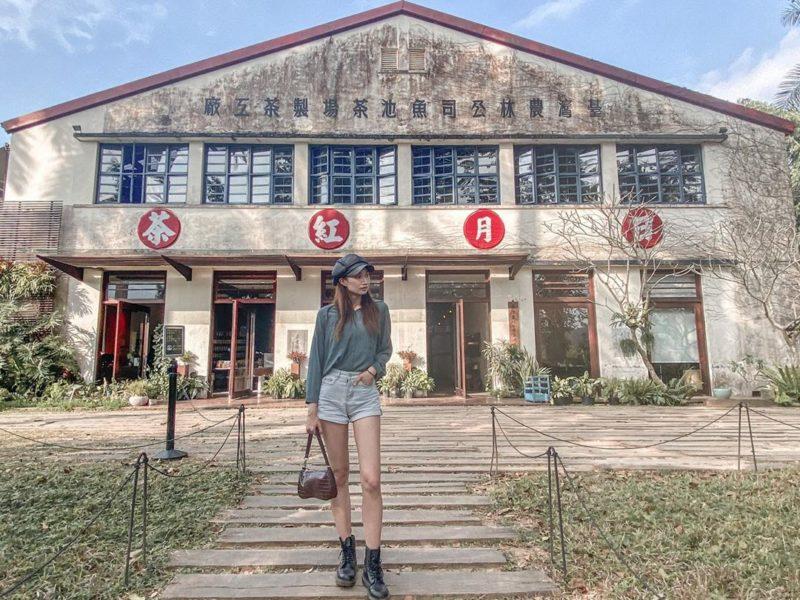 日月老茶廠是魚池埔里面積數一數二的茶園,