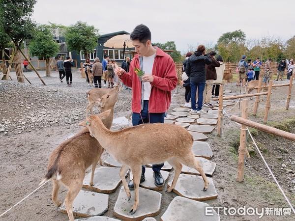 台版奈良在宜蘭!推薦景點「斑比山丘」有小鹿還有貨櫃市集