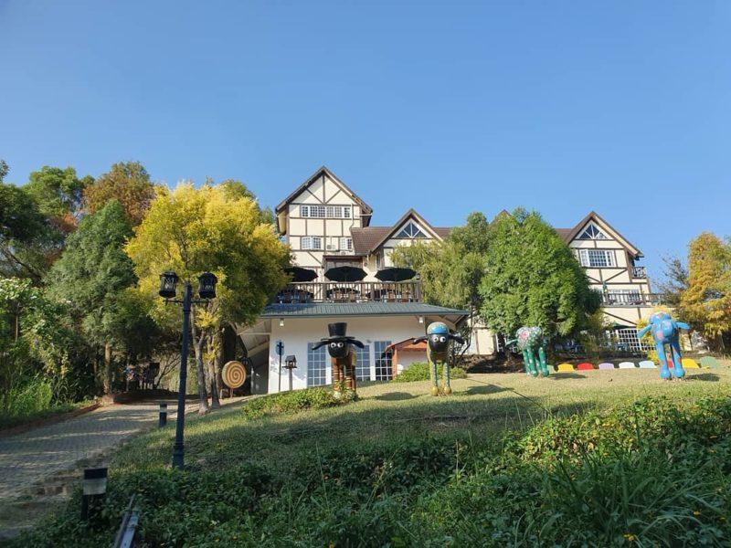桃園景觀咖啡|綠光森林|復興鄉|復興鄉咖啡廳|景觀咖啡|台7線