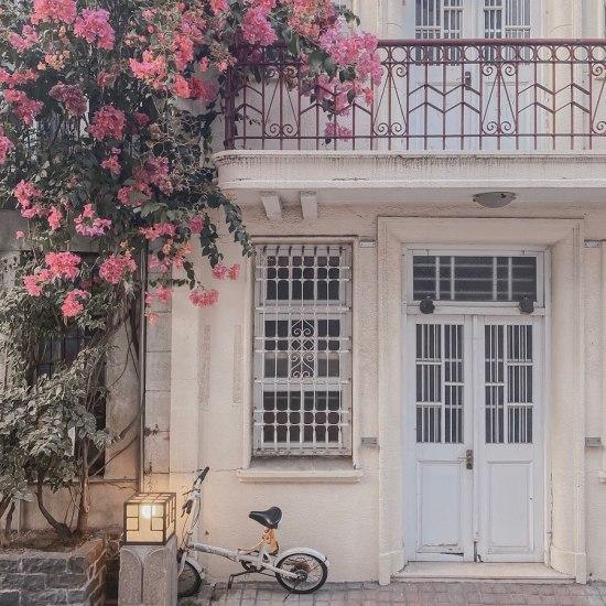 這裡有上千片最完整的百年老花磚?傳統鐵花窗、花磚景點推薦