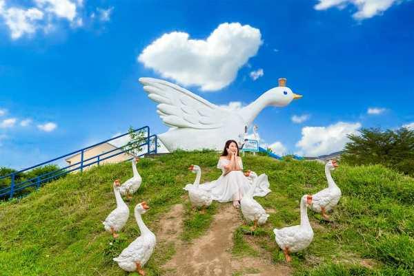 鵝媽媽 鵝童樂園