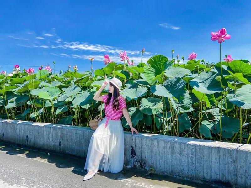 台中荷花園