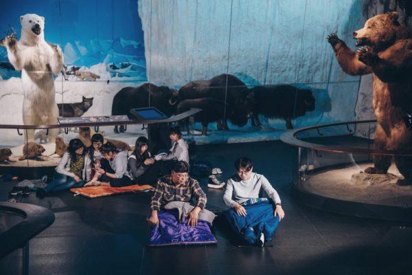 奇美博物館|穹頂計畫,台南博物館,台南景點,博物館驚魂夜,闖關遊戲