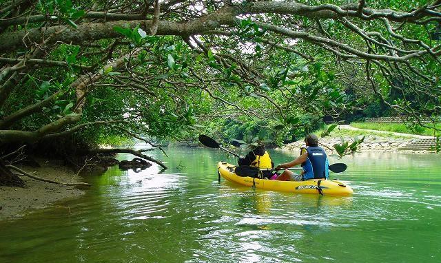 比謝川紅樹林獨木舟之旅 沖繩活動