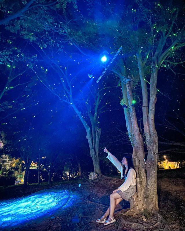 八里沙雕藝術展|八里光雕展|淡水八里|八里左岸|