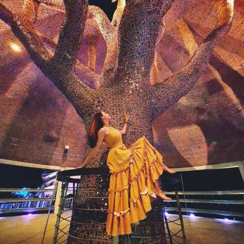 台東海濱公園 光雕表演 向陽樹 台東夜景 台東景點推薦