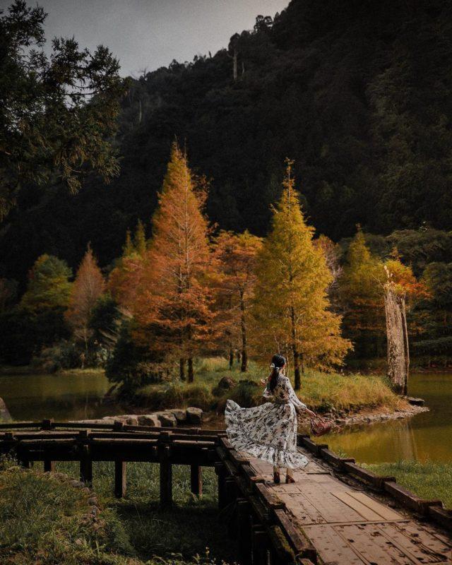 宜蘭景點|明池國家公園|2021走春|走春景點|北北基走春|北部走春
