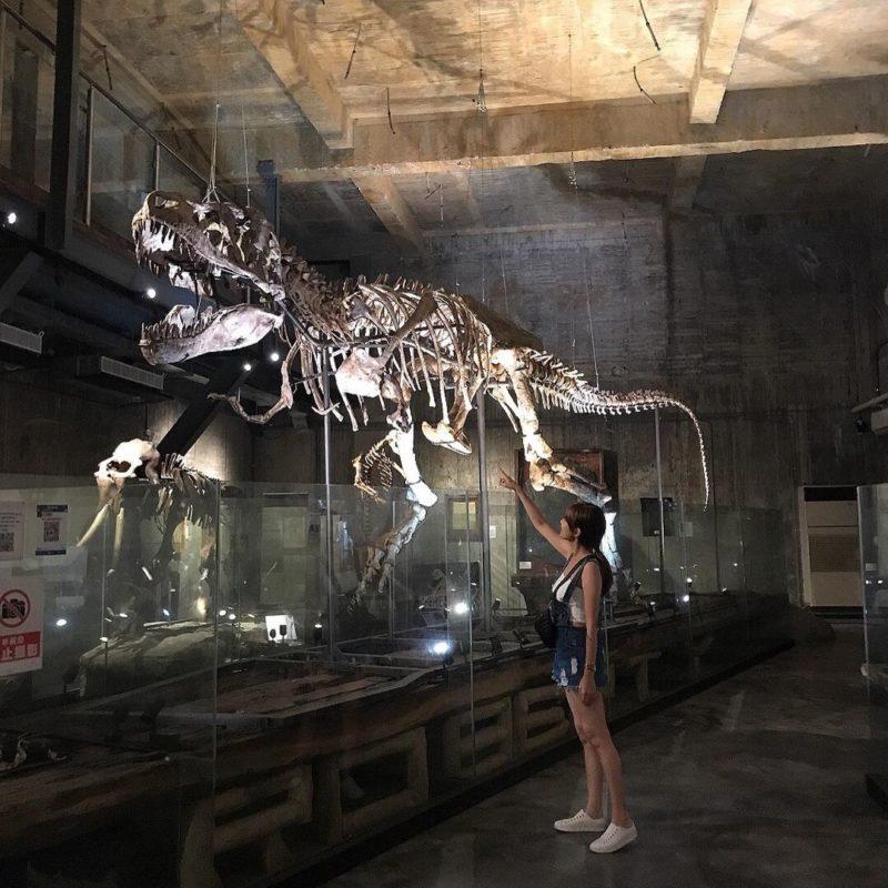 宜蘭宜蘭蘇澳景點|宜蘭室內景點|宜蘭雨天景點|宜蘭親子景點|宜蘭博物館|廢墟博物館|暴龍化石博物館