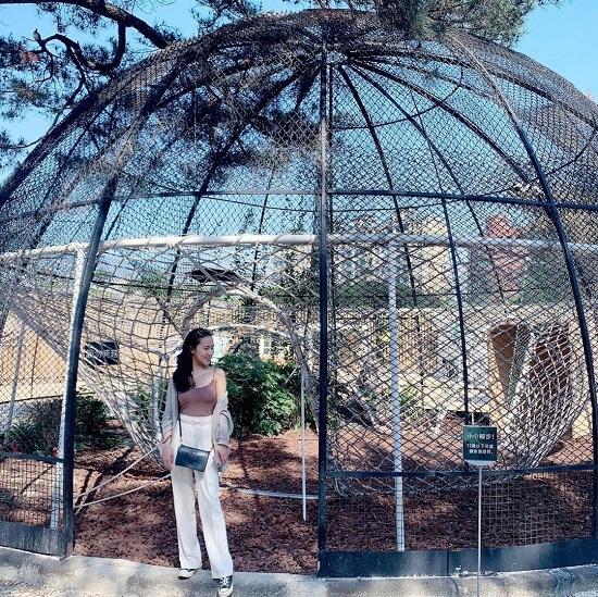 2021新竹燈會|2021新竹走春景點|新竹景點|新竹親子景點|新竹市立動物園