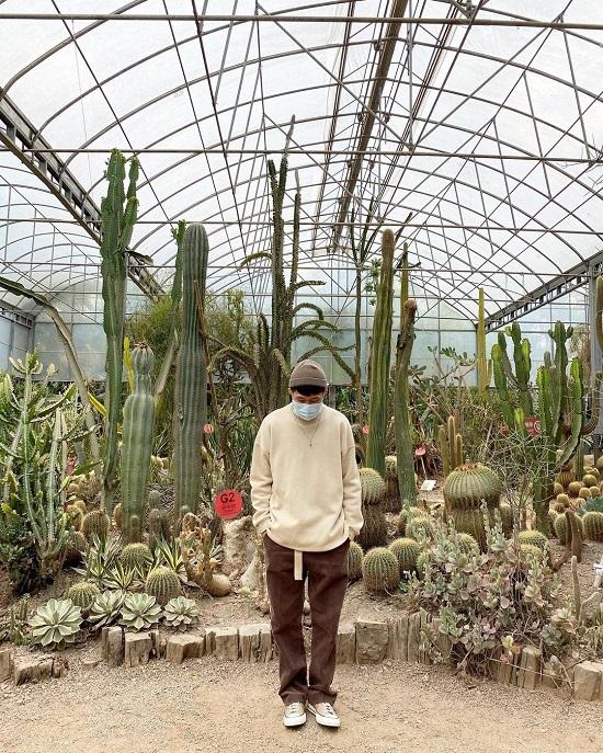 2021新竹燈會|2021新竹走春景點|新竹景點|新竹親子景點|綠世界生態農場