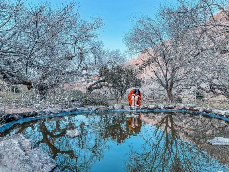 烏松崙森林渡假營【石家梅園】