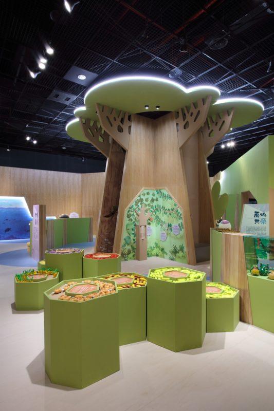 嘉義市立博物館|兒童廳|探索樂園|嘉義景點|嘉義文化中心圓區|嘉義博物館