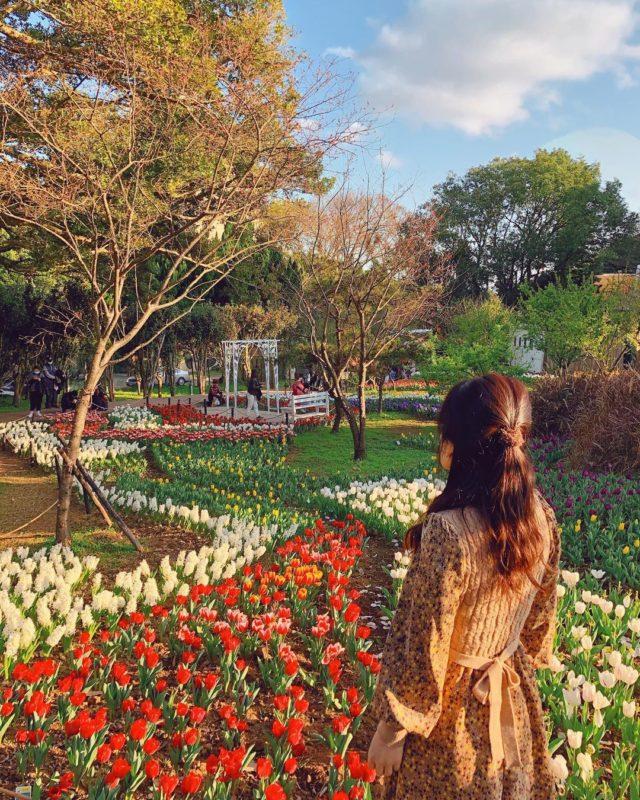 陽明山花卉試驗中心賞花景點
