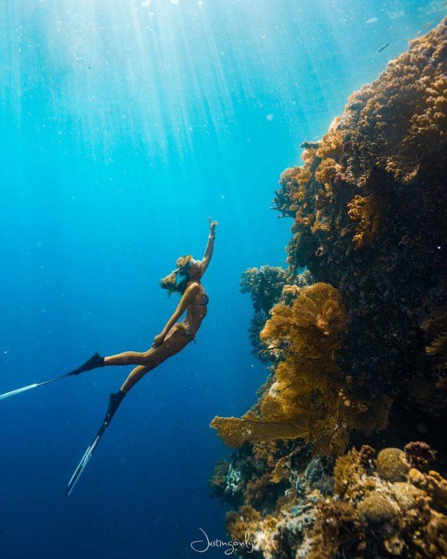 出國|帛琉玩什麼?關於臺灣帛琉旅遊泡泡的小知識 交通總整理 | 生活 | NOWnews今日新聞