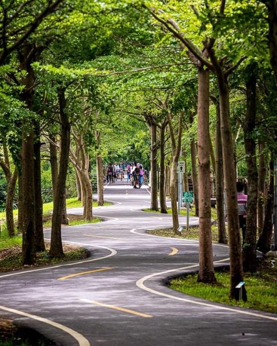 台中景點自行車道