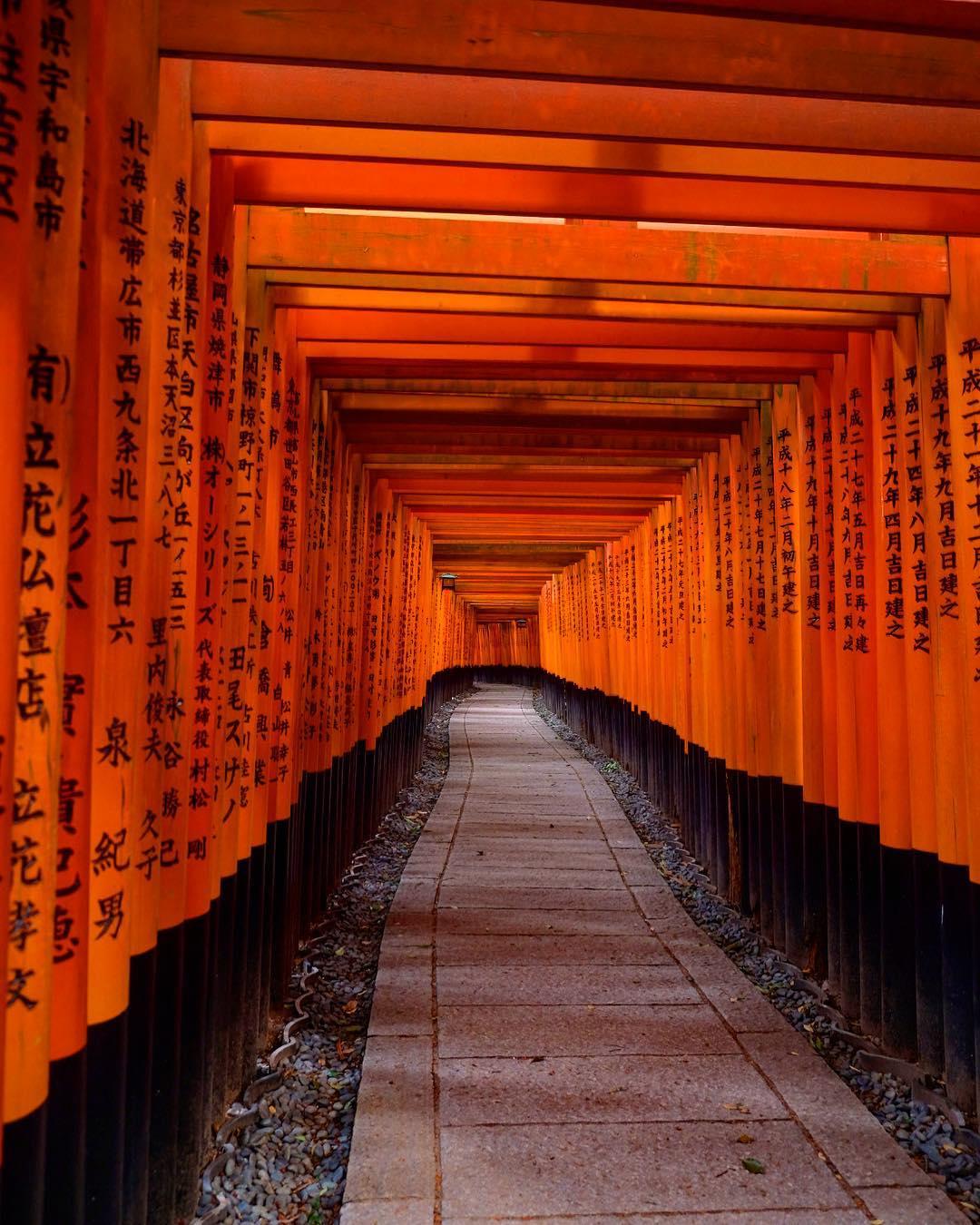 京都神社 伏見稻荷大社 千本鳥居