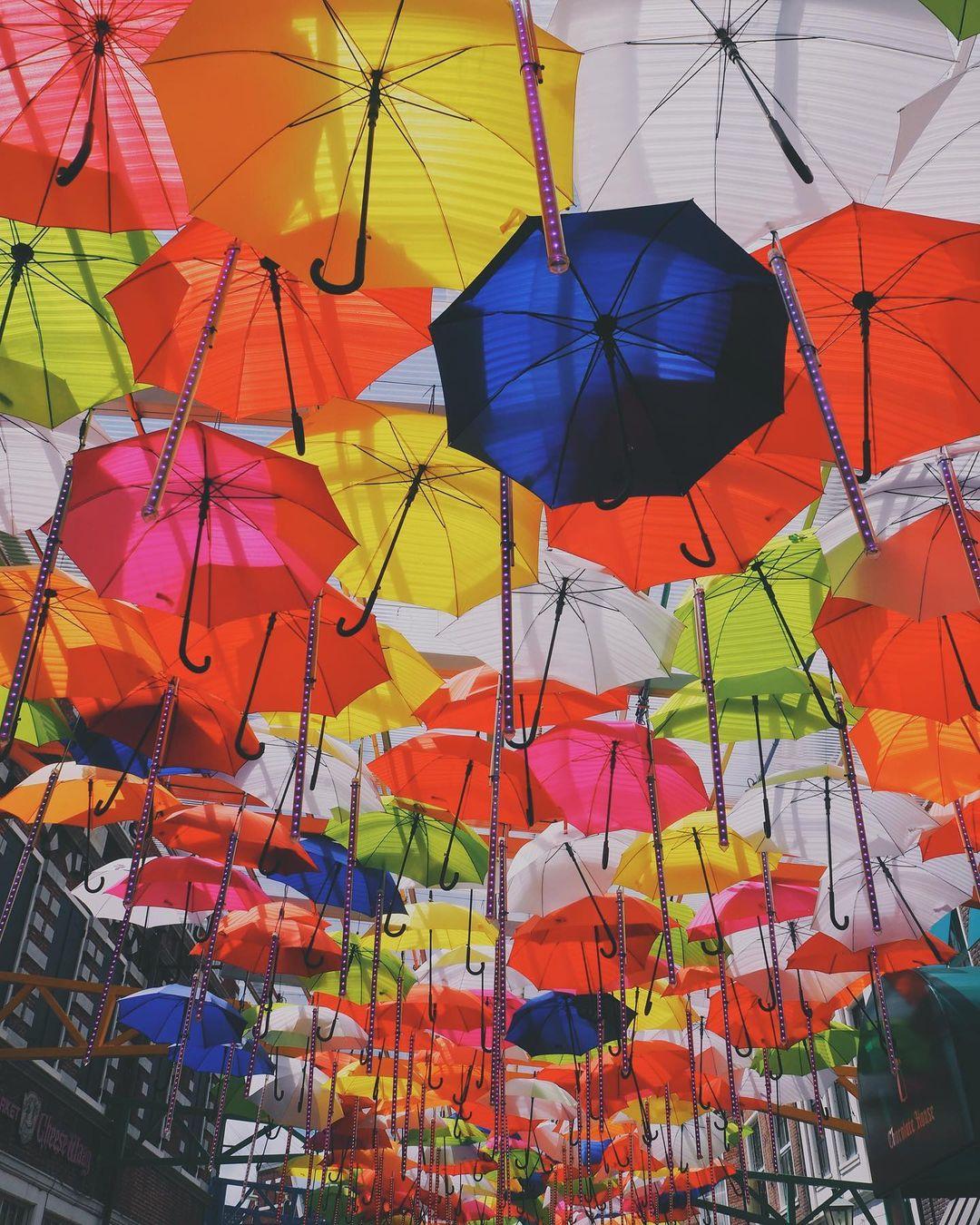 豪斯登堡 雨傘街 打卡