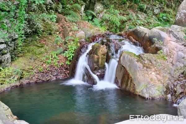步道沿途溪水潺潺,像是進入一處與世隔絕的自然寶庫。