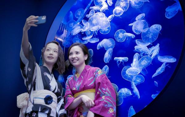 ▲桃園青埔「Xpark水族館」8/7迎來開幕一週年,特別將館內打造出各式日本夏日趣味活動。(圖/Xpark提供)