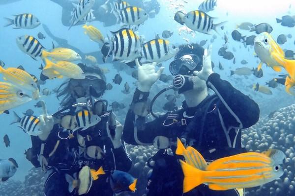 ▲墾丁水肺潛水。(圖/KLOOK提供)