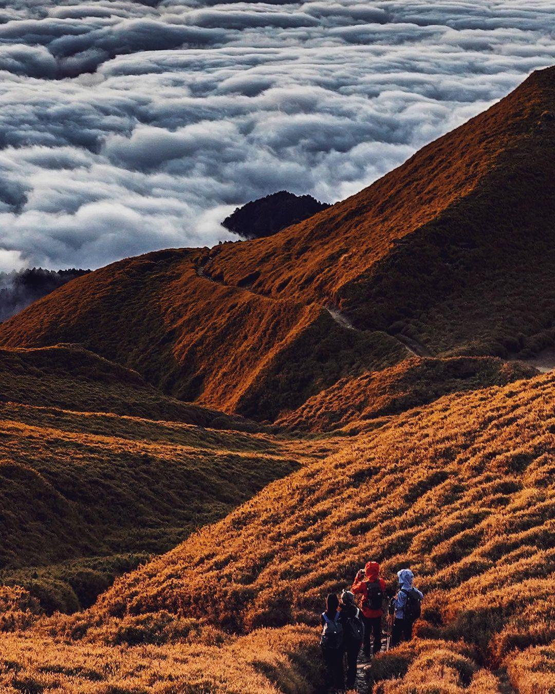 百岳入門奇萊南華金色大草原