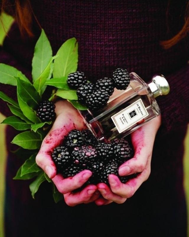 #Jo Malone 黑莓與月桂葉