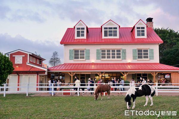 ▲柵欄裡圈養四隻迷你馬、三隻駿馬,幸運的話,有機會體驗以紅蘿蔔餵食迷你馬。