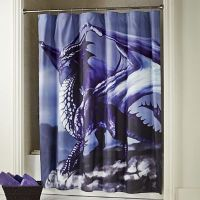 Ethereal Dragon Shower Curtain from Seventh Avenue | DI745959