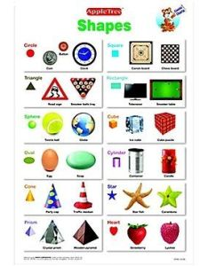Buy apple tree preschool charts pack of inch wall chart online best prices in india rediff shopping also rh mshopdiff