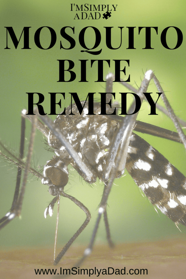 Kid Safe Mosquito Bite Remedy: Learn how to make your own natural Mosquito Bite cream to reduce the pain, itching, and swelling that comes with bug bites. Use any of these 5 essential oils for the best homemade Mosquito Bite Remedy that will help you get rid of mosquito bites fast.