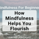 What is mindfulness? In this guide to mindfulness for beginners, learn the definition and benefits of mindfulness, how to do a mindfulness meditation, ideas and easy exercises to help you be happier and more mindful everyday.